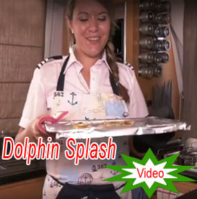 Catamaran Dolphin splash Charter Chef