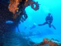 Underwater BVI Paradise